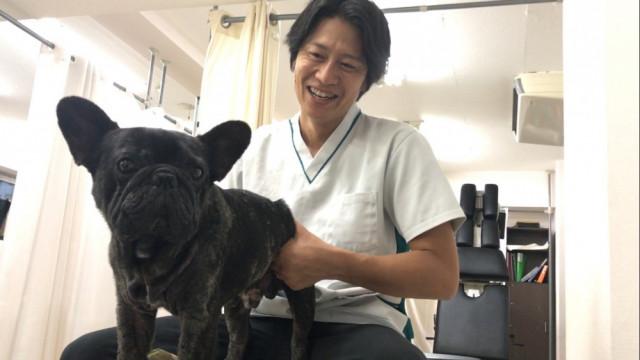 犬の施術もしていると聞きましたが・・・